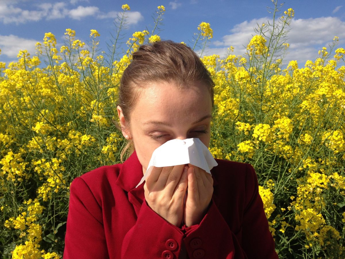 7 causes à l'ORIGINE de l'augmentation des ALLERGIES