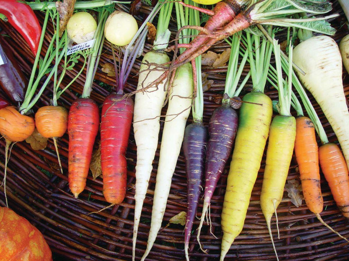 Les 7 choses à faire (ou ne pas faire) dans votre jardin au mois de mars