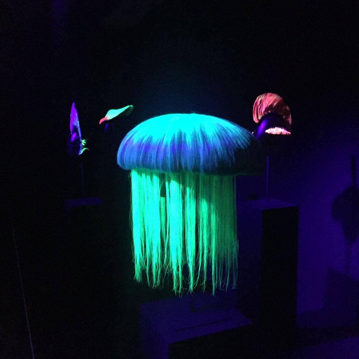 7 raisons d'aller voir l'expo perruque'n roll de Charlie le Mindu