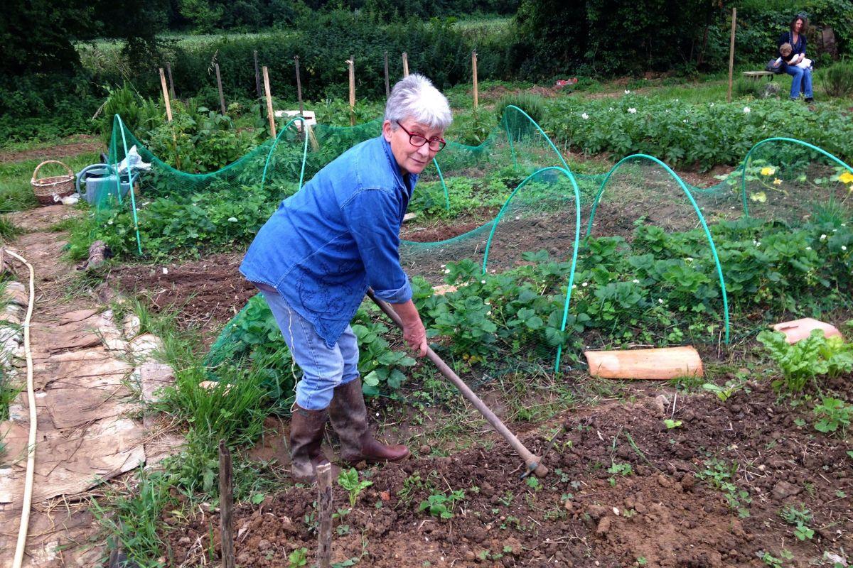 Les 7 choses à faire (ou ne pas faire) dans votre jardin en juin