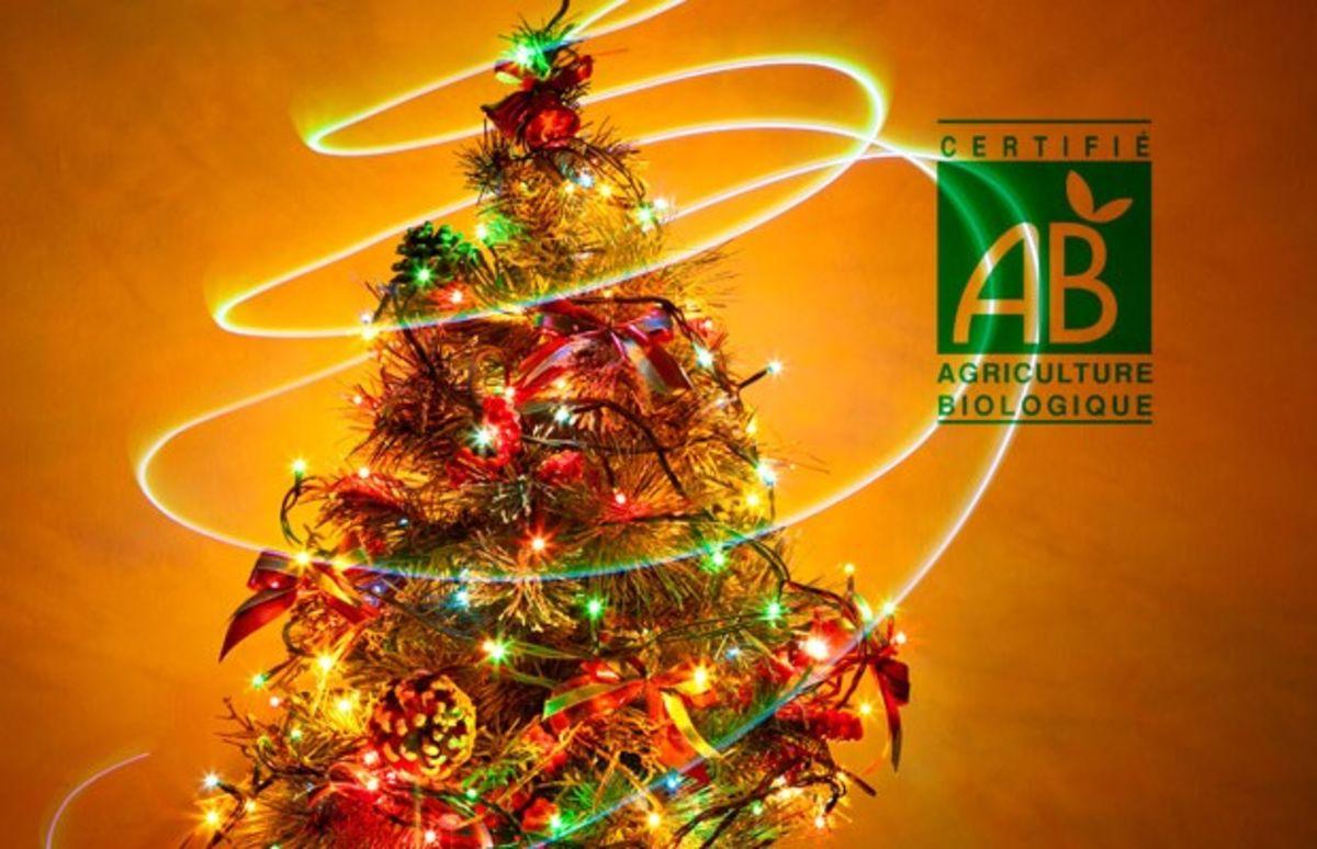 7 idées cadeaux pour un Noël éco-friendly