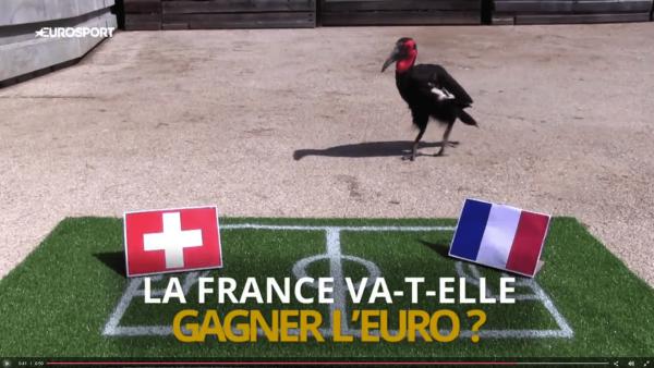 Euro 2016: le match de l'humour