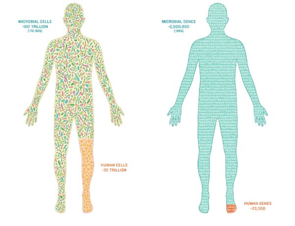 7 raisons de se passionner pour le microbiome