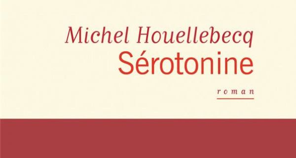 SEROTONINE de Michel Houellebecq en 7 adjectifs
