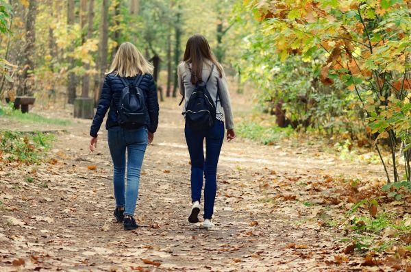 7 bonnes raisons de se promener en forêt