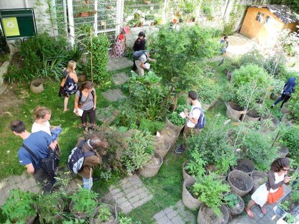 7 bonnes raisons de cultiver son jardin (en ville)
