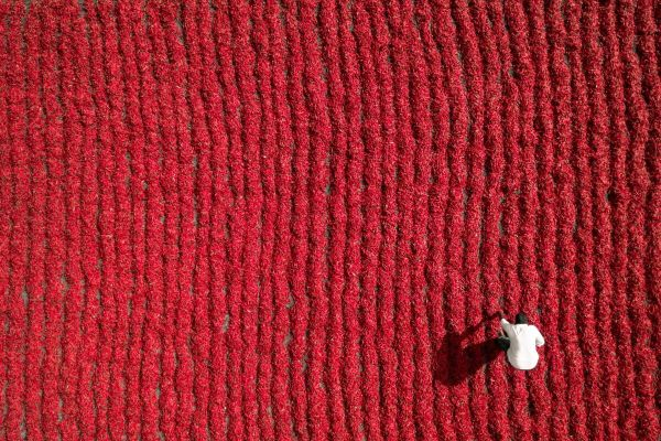 8 photos de drones époustouflantes