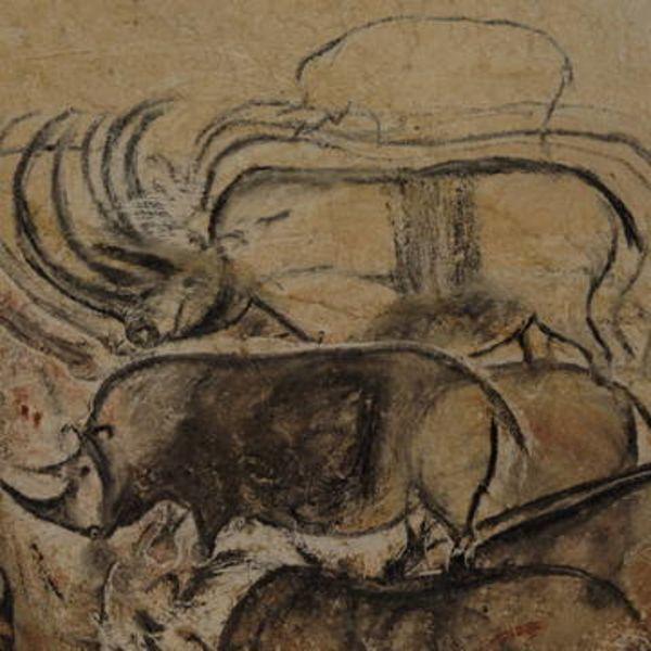 De Homo à Sapiens : 7 mystères dans 7 grottes ornées