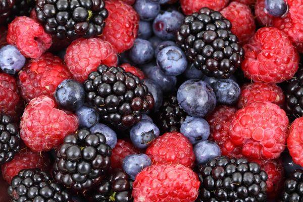 7 aliments pour vivre plus longtemps