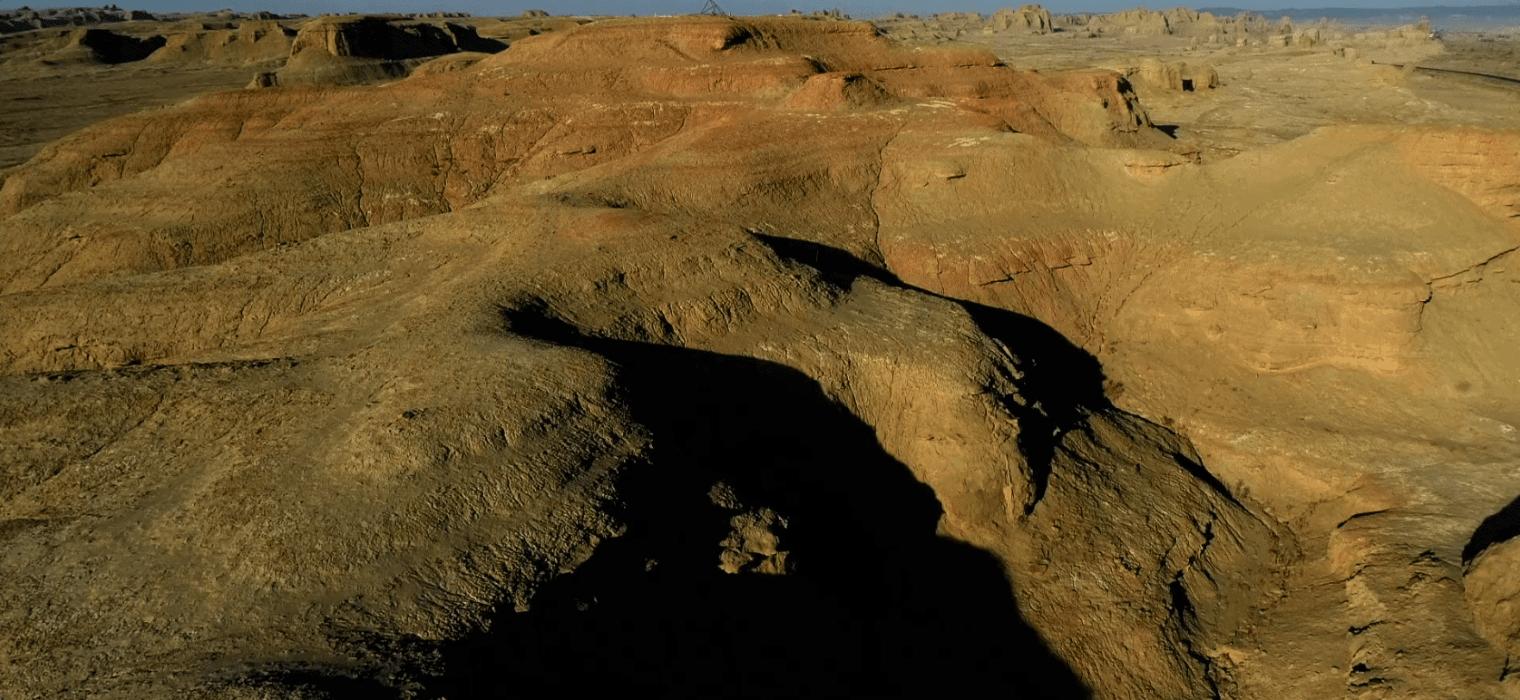 Mongolia Dinosaurs