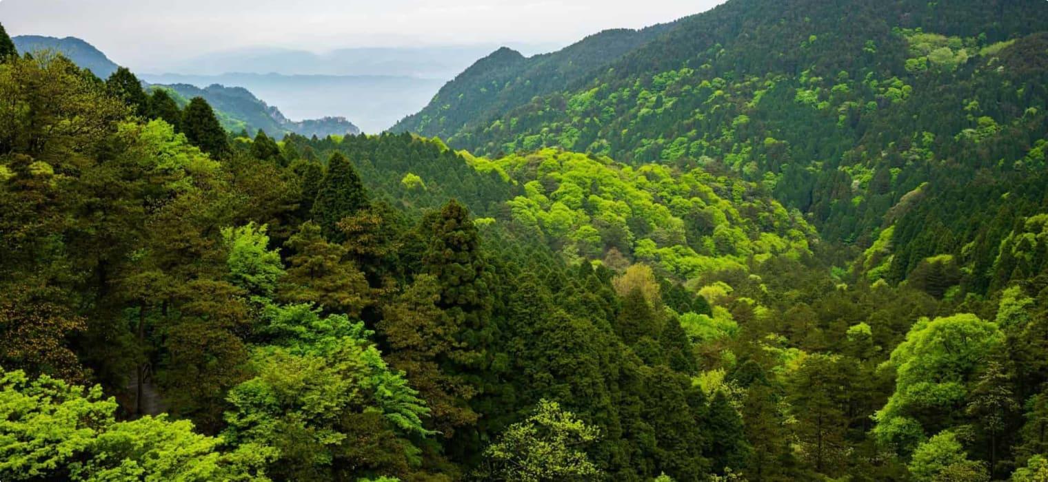 Lushan National park