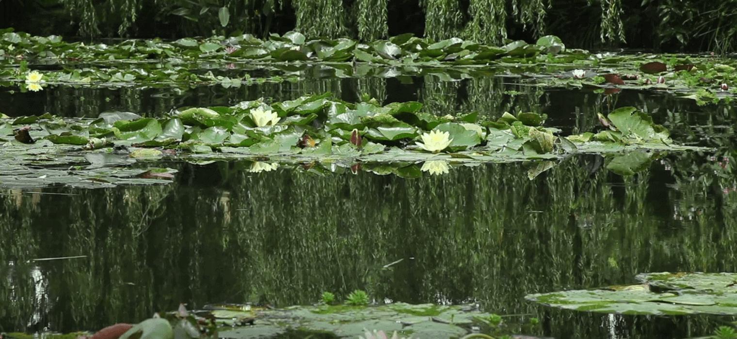 Monet's Giverney Garden
