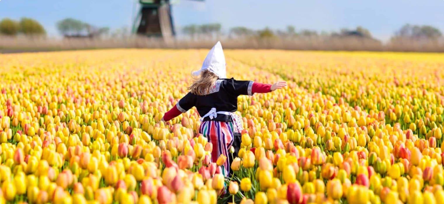 Dutch girl in tulip field Netherlands