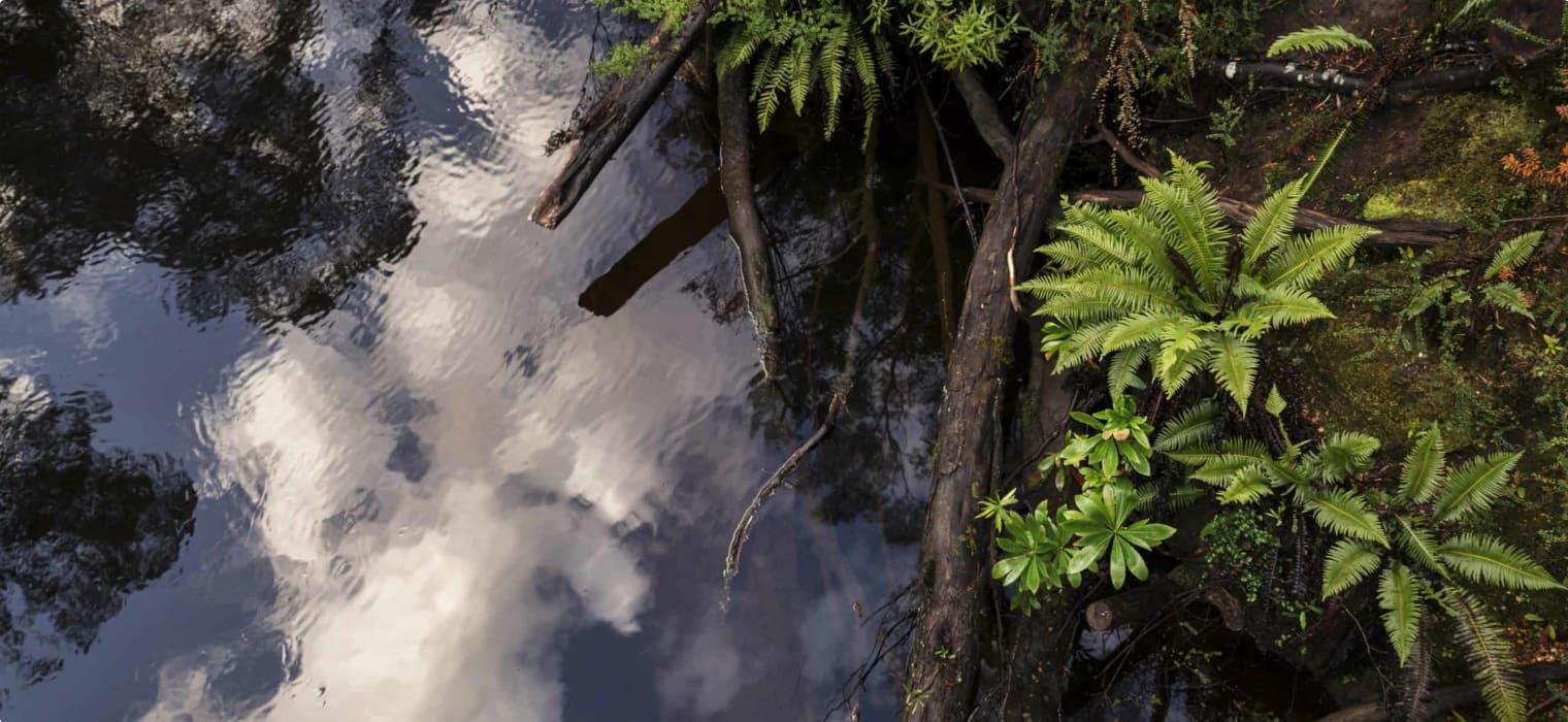 Strahan and the Gordon River, Tasmania