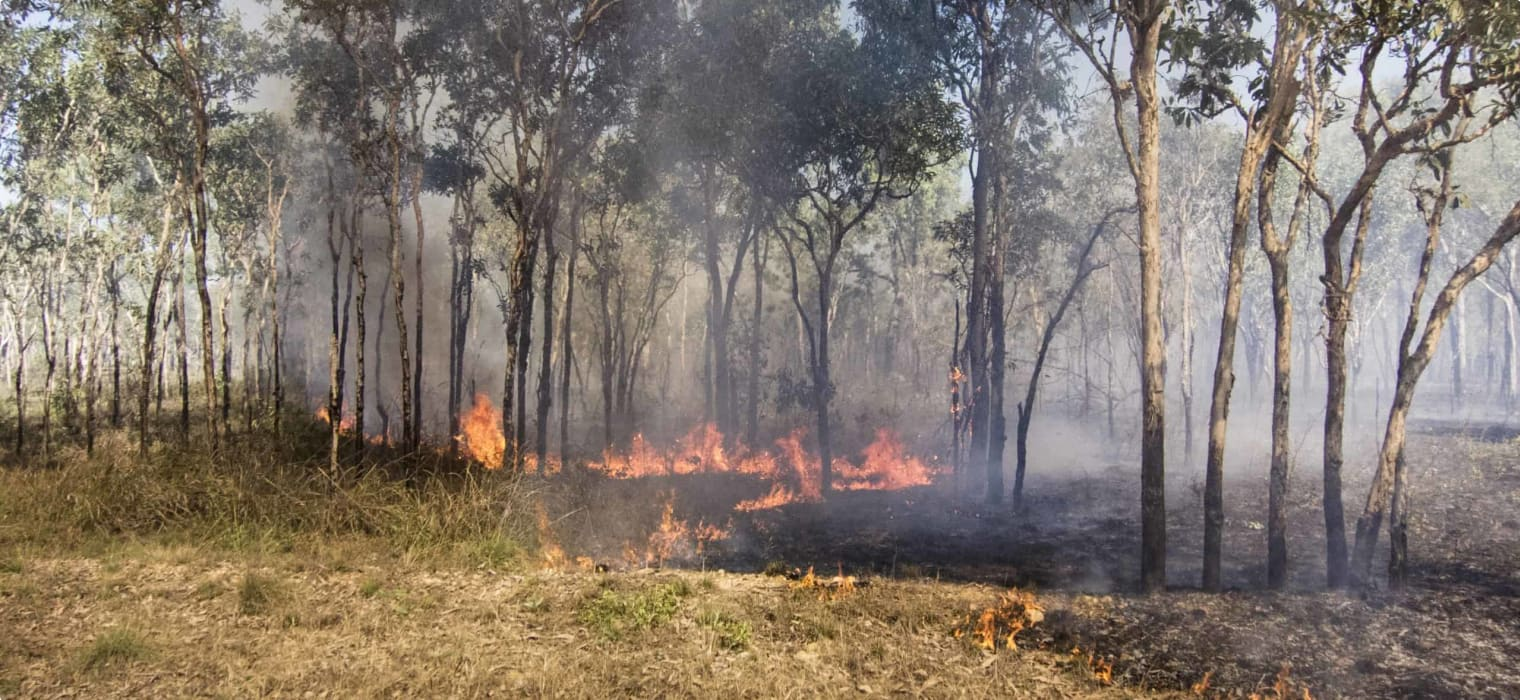 Introduction to Aboriginal Fire Management