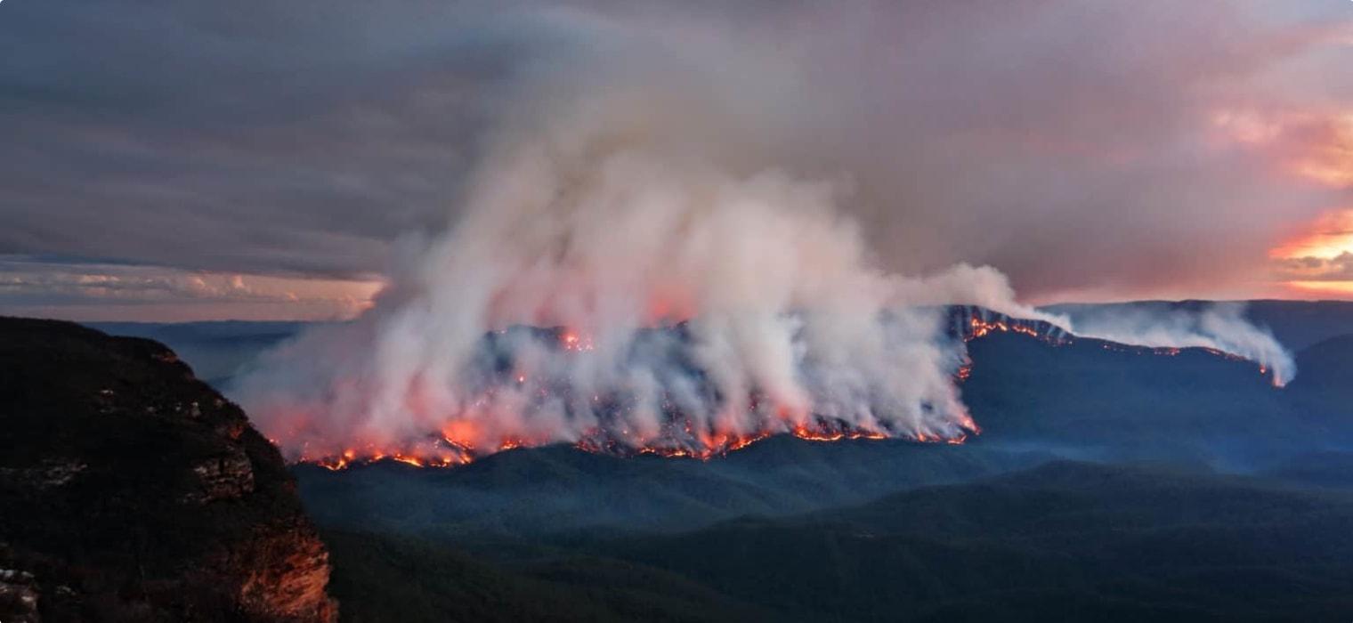 The 2019-20 Australian Bushfires