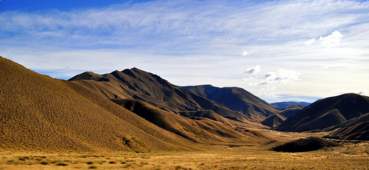 Dunedin Gold Rush