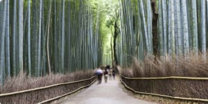 Japan History by Rail - Small Group Tour