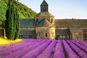 Abbey of Senanque, Gordes, Luberon, Vaucluse, Provence, France