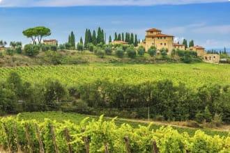 Chianti vineyard ,Tuscany, Italy