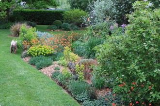 Garden in Hobart