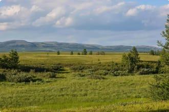 National Park Urals
