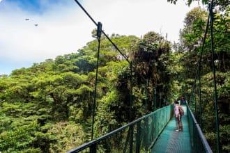 Hanging bridge at the Monteverde Cloud Forest, Costa Rica