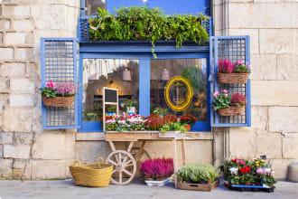 Flower Shop in Girona, Spain