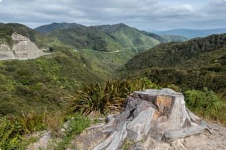 Panorama from the top of Rimutaka Hill (Upper Hill, New Zealand)