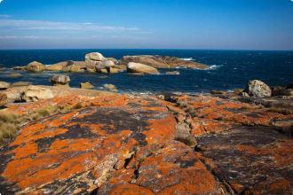 Flinders Island coastline