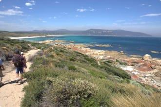 Walking track Flinders Island by TA and Graham Freeman