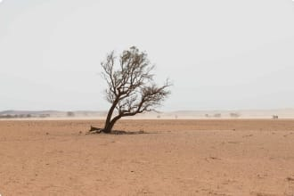 Sand storm in remote Australian agricultural farm field. Climate change or global warming concept for drought as a natural disaster.