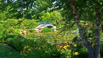 Monet's Giverny Garden