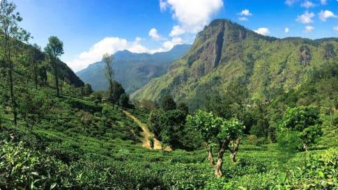 Central Highlands Sri Lnka