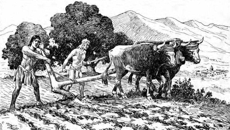 Primitive plow agriculture