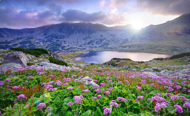 Retezat National Park in Romania