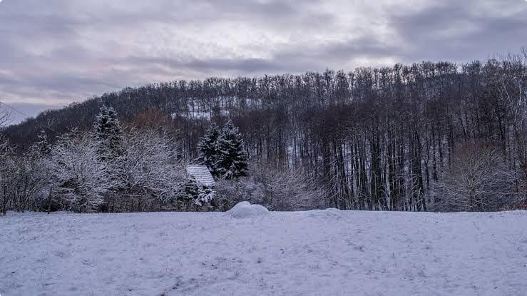 A Hungarian Winter