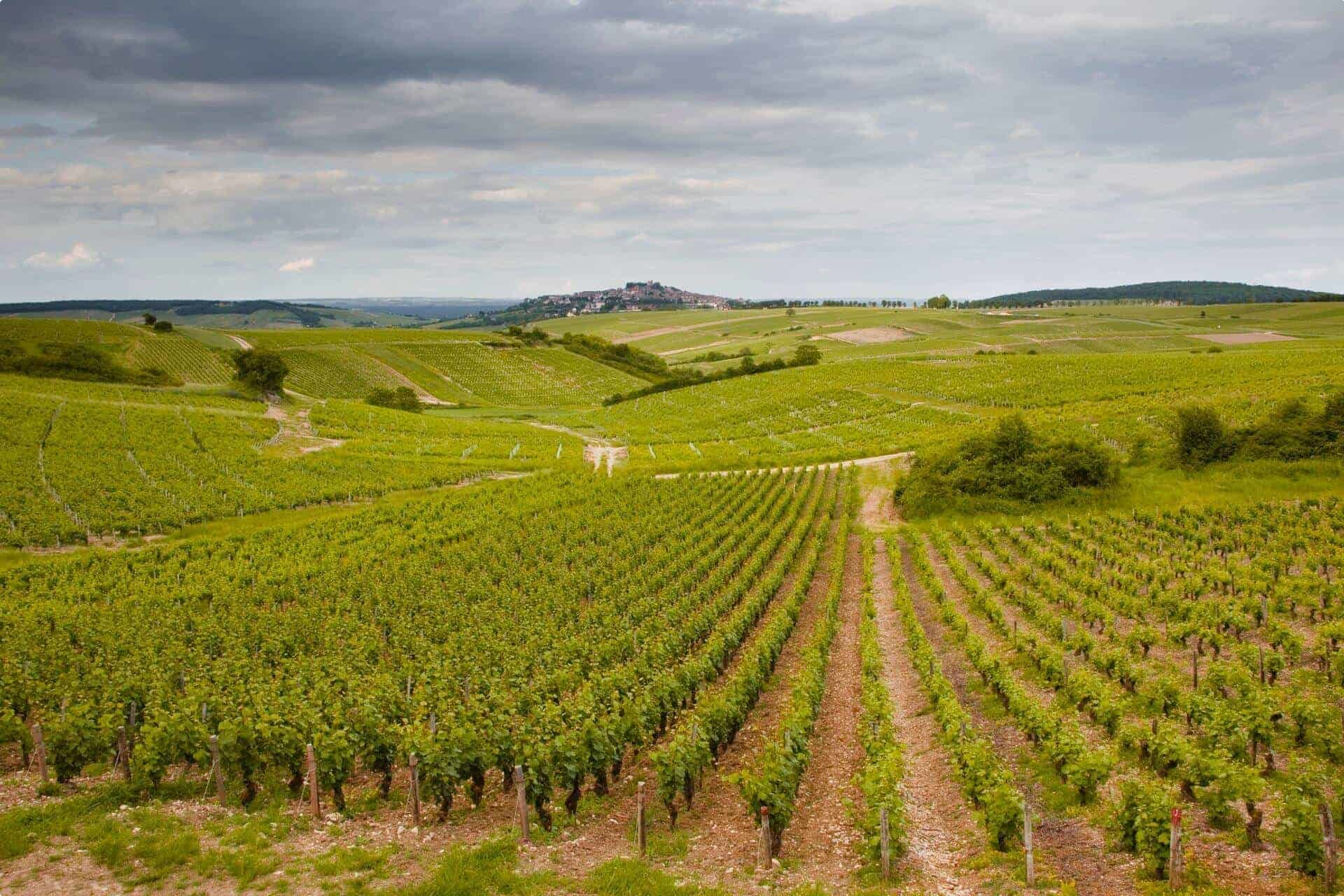 Sancerre in the Loire Valley of France.