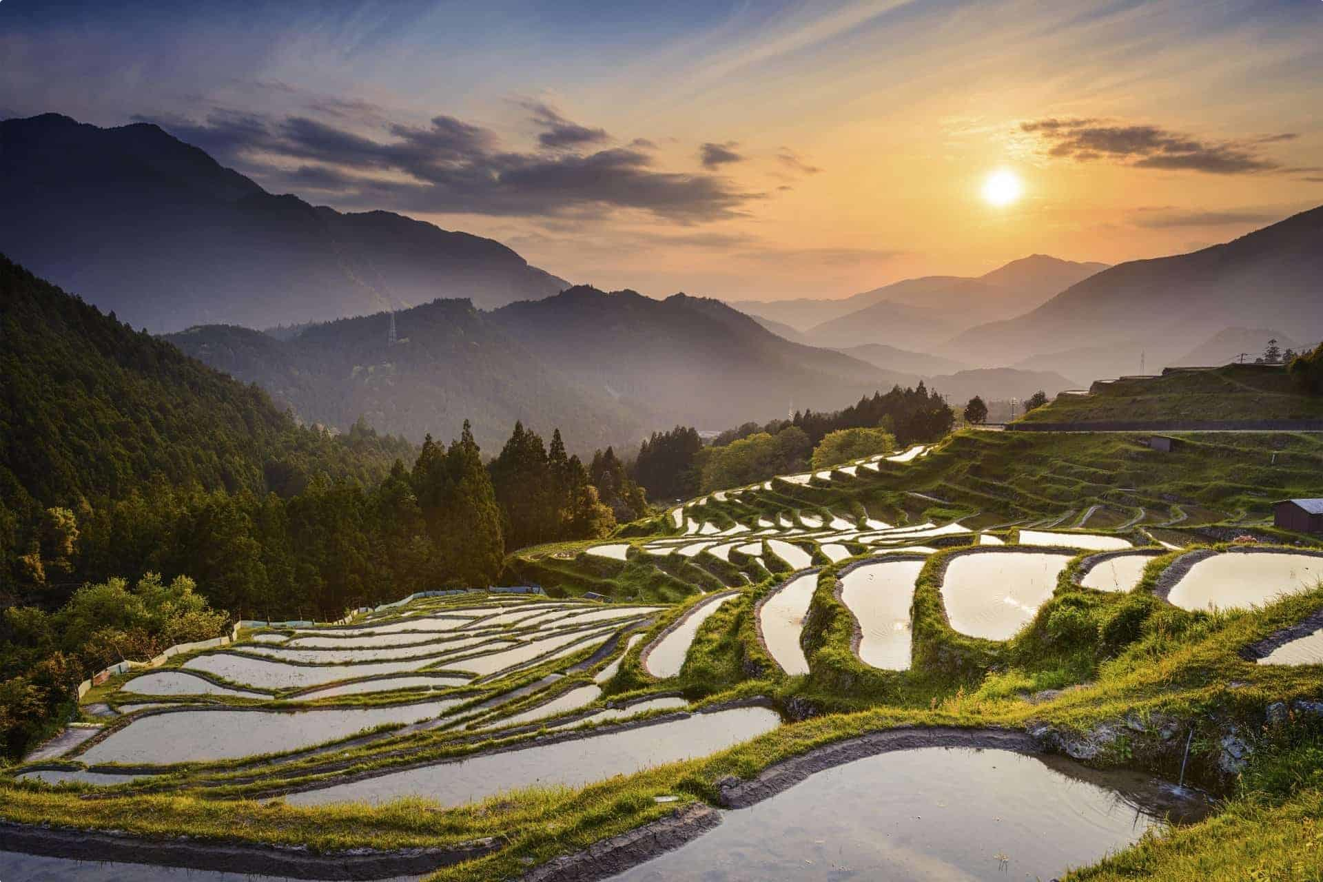 Maruyama-senmaida, Kumano, Japan Rice Terraces