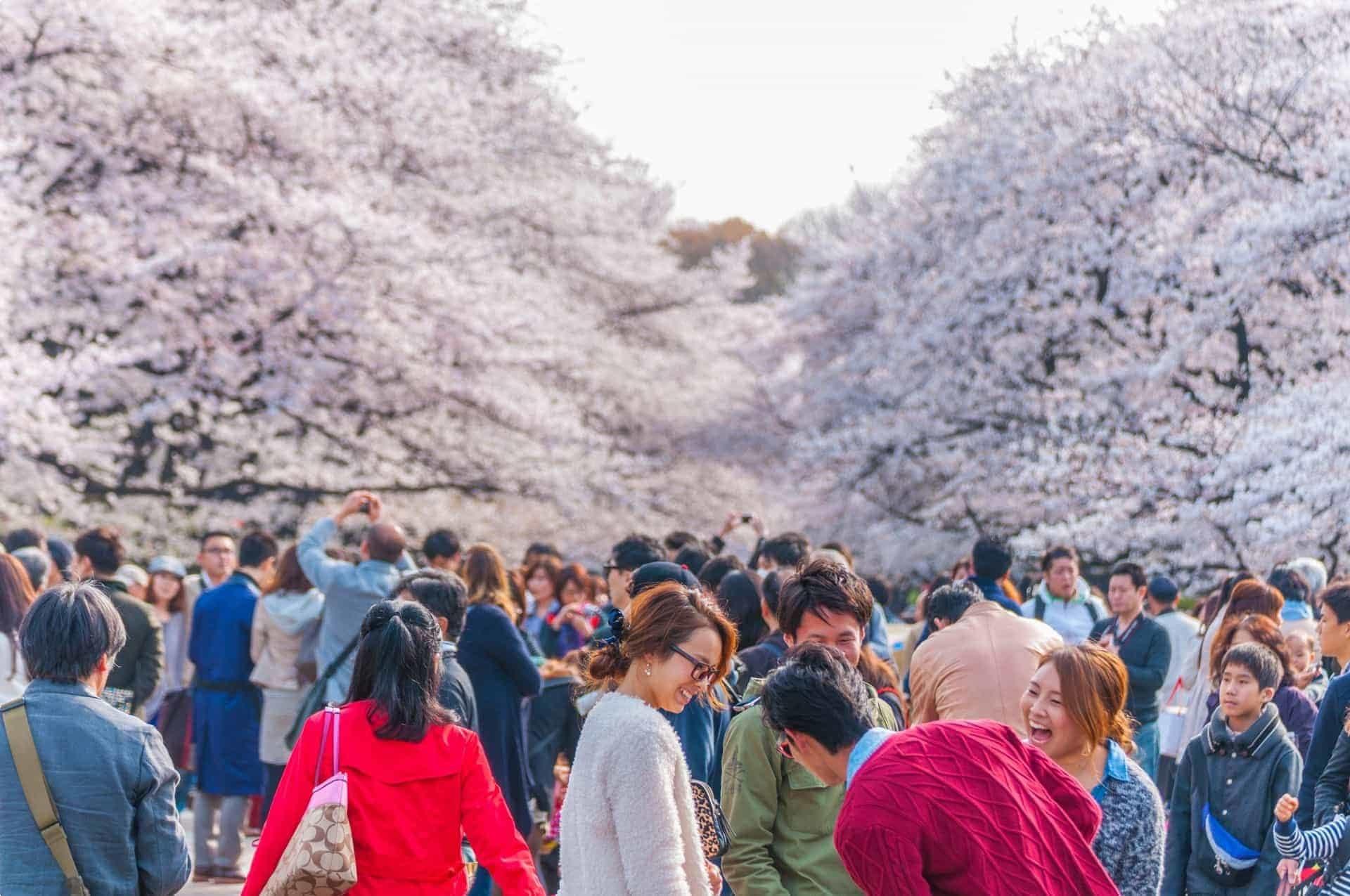 Japanese tour