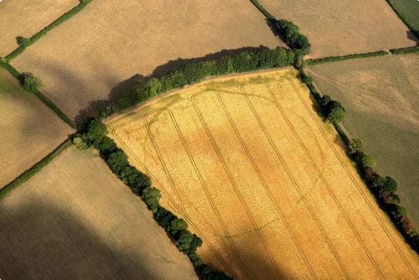 Aerial observation of Archaeological features