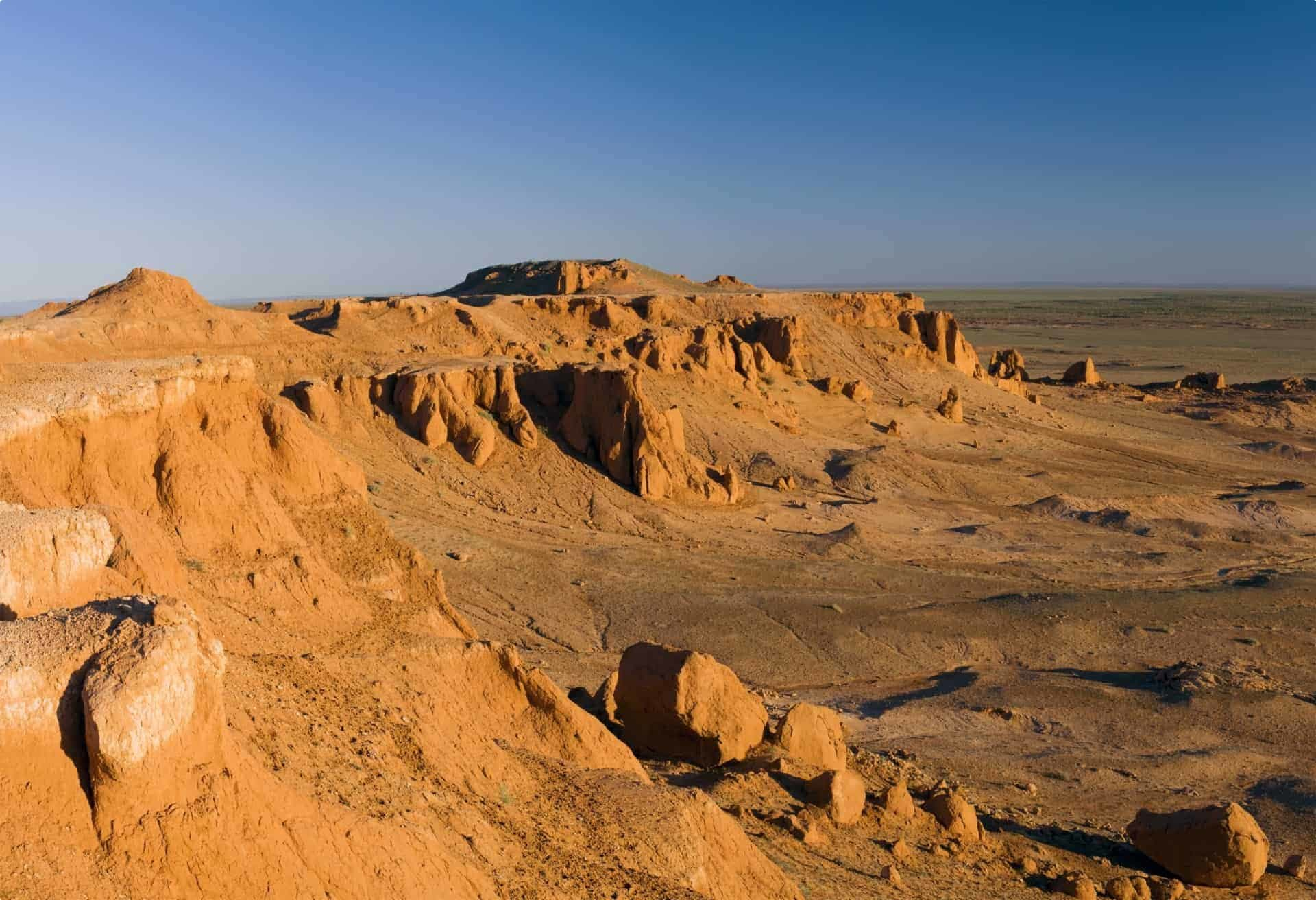 The Gobi desert is home to significant numbers of dinosaur fossils