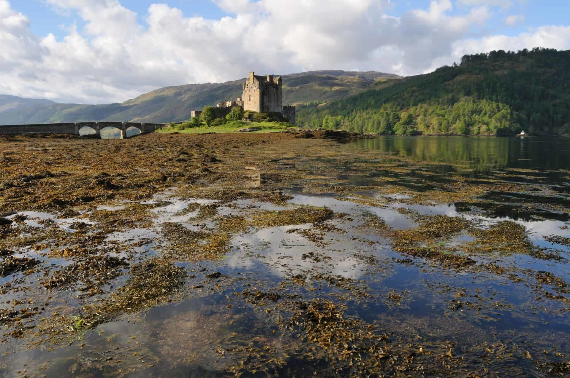 Eilean Donan in Scotland surrounded by marsh and peat
