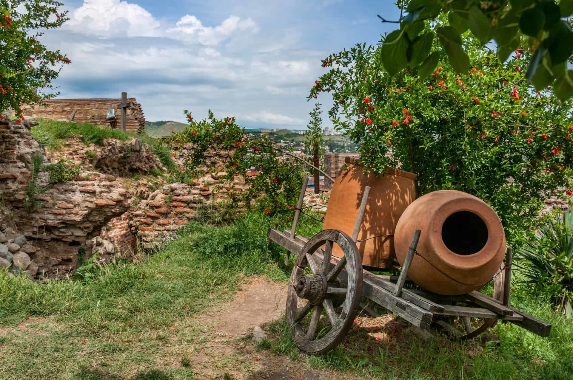 Georgian Wine Country