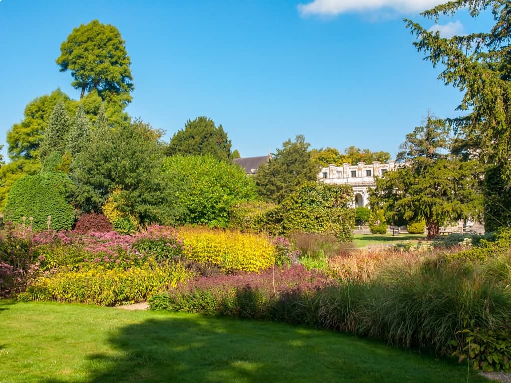 A collection of trees and shrubs at Trentham Gardens