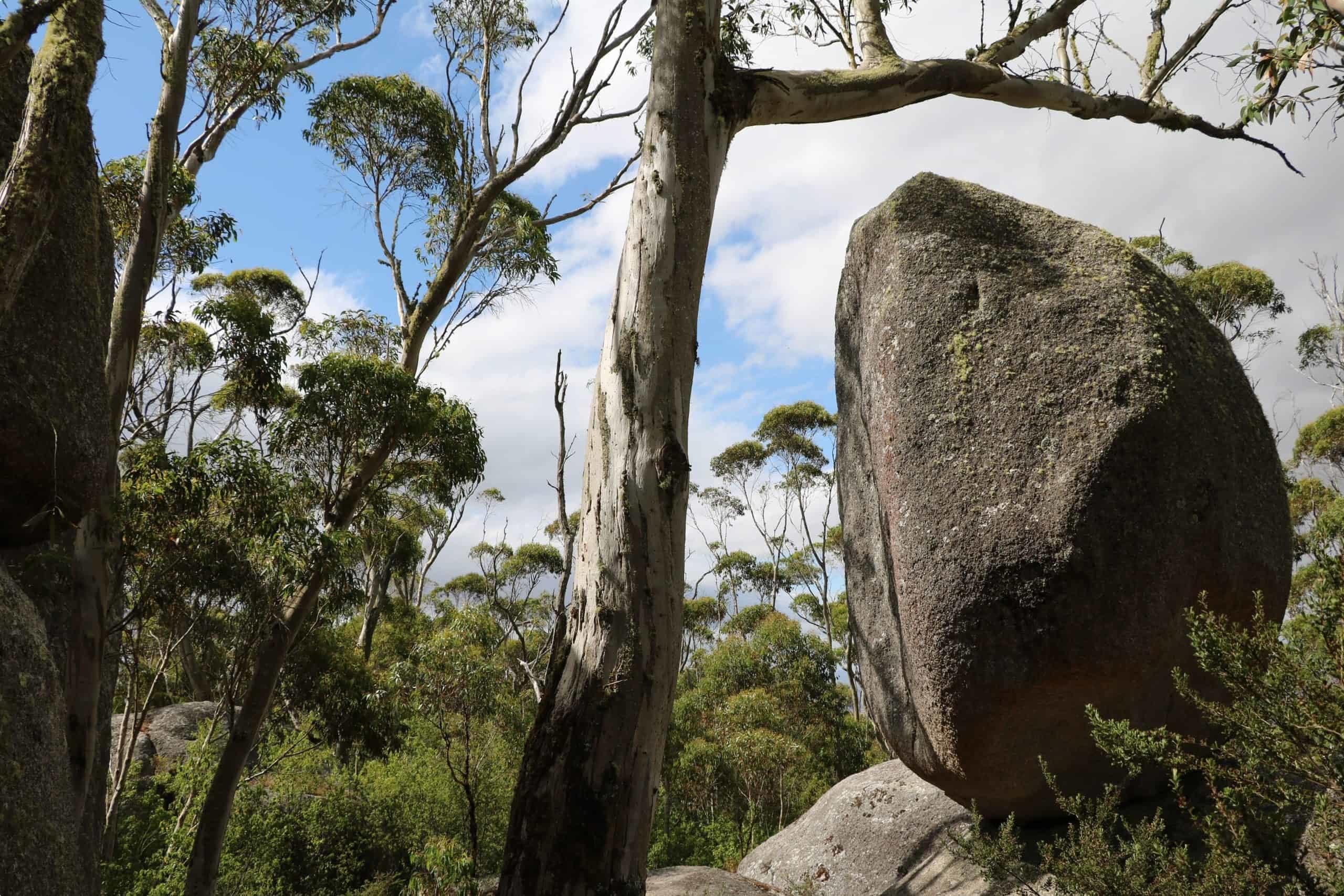 Granite boulders in Porongurup National Park.