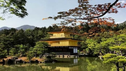 10 Books on Japan | A Guide for Senior Travellers