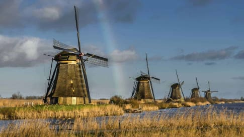 Western Europe Treasures and gardens small group tour Kinderdijk