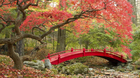 Walking Japan small group tour