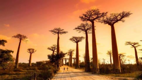 Madagascar's Fascinating History